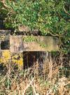 Thumbnail of DAWeycroft1349-2.jpg