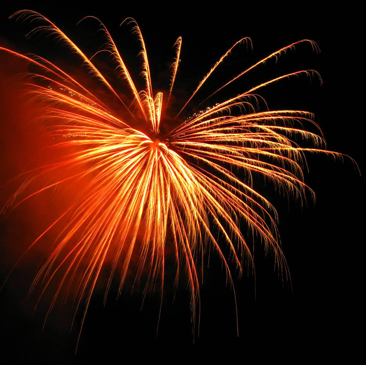 Image of celebratory firework!