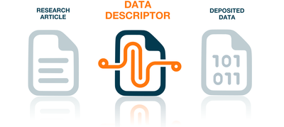 data descriptor