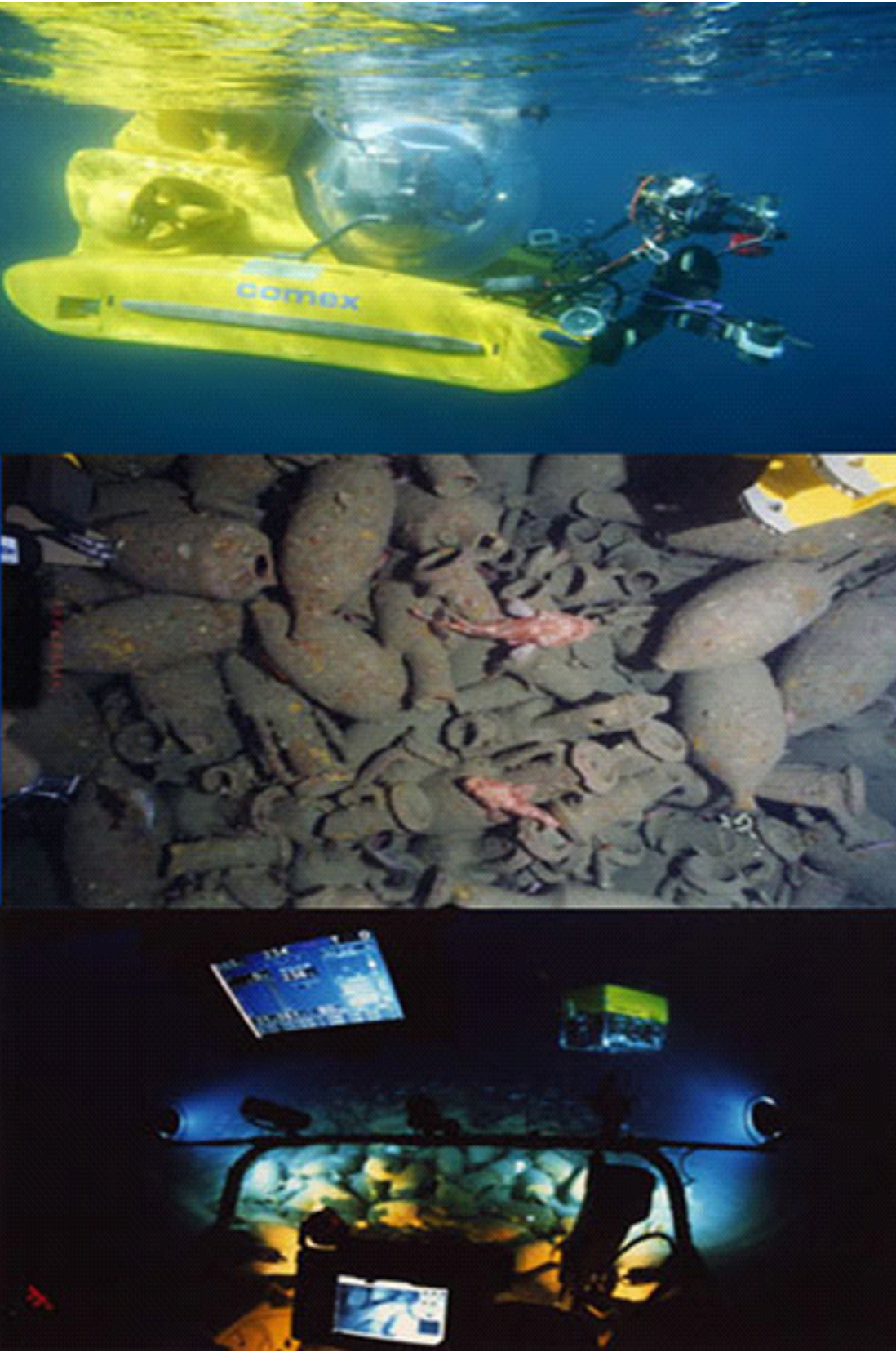 Montage of images from the Venus Project