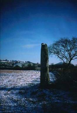 Figure 40: Maes Mochnant Standing Stone, Powys. Photograph no. cs97066005 © CPAT 2007.