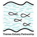 Thames Estuary Partnership logo